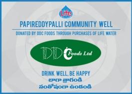 DDC Foods