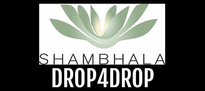 ShambhalaDrop4dropBlogHeader